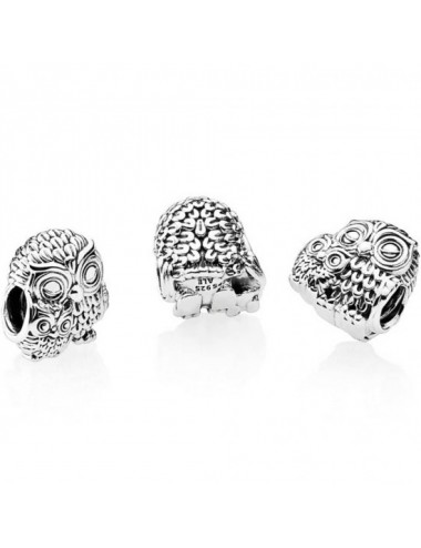 Mother Owl and Baby Owl Charm