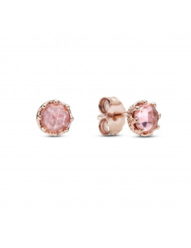 Pink Sparkling Crown Stud...